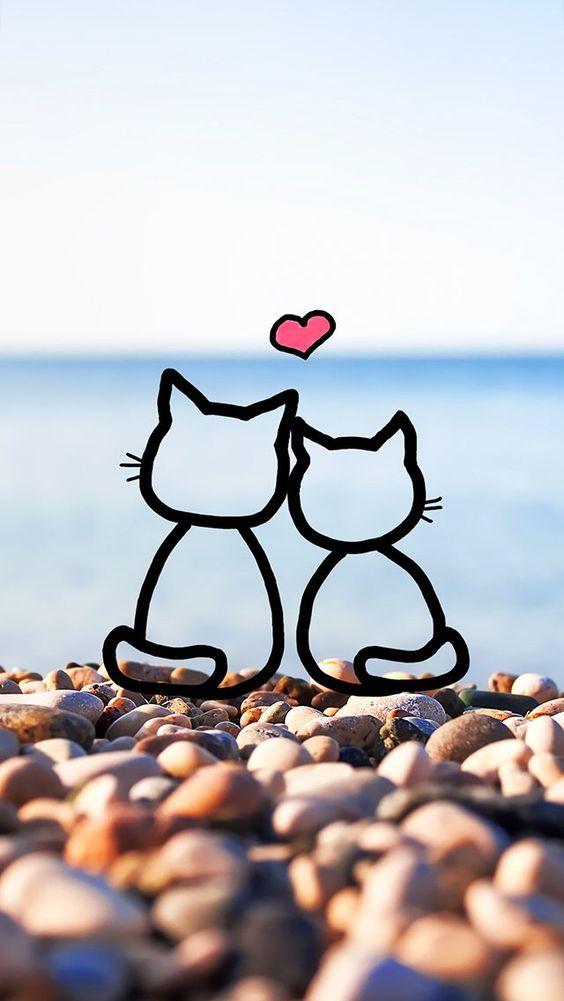 bonito fondo de pantalla para celular de gatitos