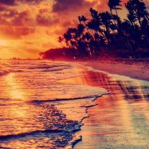 fondo de pantalla de celular playa