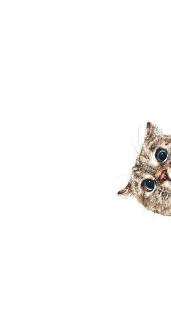 tierno fondo de pantalla para cel de gatito