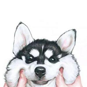 tierno fondo para celular de perrito feliz