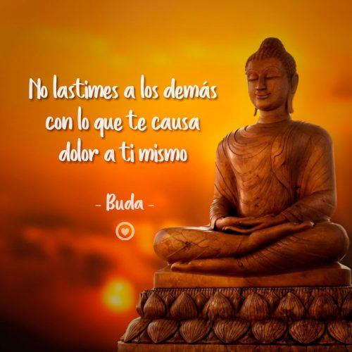 Frase sabia de Buda